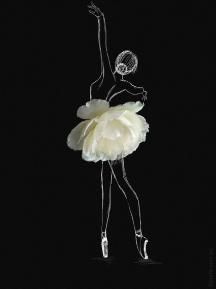 fashion sketch of ballerina with white rose flower as a ballet skirt